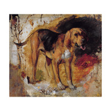 A Study of a Bloodhound, 1848 Giclee Print by William Holman Hunt