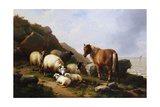A Pony and Sheep on a Cliff with a Sailing Vessel Beyond, 1868 Giclée-Druck von Eugene Joseph Verboeckhoven