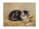 The Tabby Giclee Print by Henriette Ronner-Knip