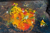 Hinduism: Pigments (Red Kumkum, Yellow Turmeric/Saffron Powder) and Scattered Flower Petal… Fotografie-Druck