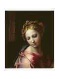 The Madonna (Detail), C.1518 Reproduction procédé giclée par  Raphael
