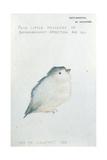 This to Comfort You Giclée-tryk af Edward Burne-Jones
