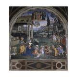 Adoration of the Shepherds Giclée-tryk af Bernardino di Betto Pinturicchio