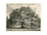 The Chandos Oak, Michendon House, Southgate, London Giclée-Druck von Jacob George Strutt
