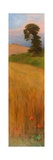 Barley, 1882 Giclee Print by Philip Hermogenes Calderon