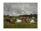 Cows at the Pasture Reproduction procédé giclée par Eugène Boudin