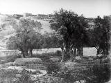 Gethsemane  1857