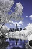 Infrared Reflections at Central Park Impressão fotográfica por Vincent James