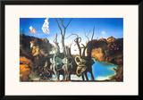 Reflections of Elephants Prints by Salvador Dalí