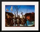 Swans Reflecting Elephants, c.1937 Print by Salvador Dalí