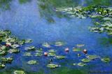 Claude Monet Water Lilies Nympheas Plastic Sign Placa de plástico