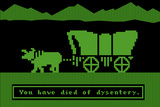 You Have Died of Dysentery Video Game Plastic Sign Placa de plástico