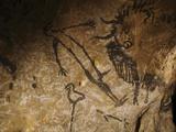 Stone-age Cave Paintings, Lascaux, France Fotografisk tryk af Javier Trueba