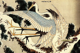 Katsushika Hokusai Two Cranes on a Pine Covered with Snow Plastic Sign Placa de plástico por Katsushika Hokusai