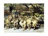 A Shepherd with his Flock Reproduction procédé giclée par Heinrich Zugel