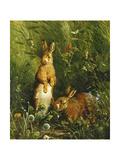 Hares Lámina giclée por Olaf August Hermansen