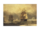 The 'Swan' and 'Isabella' Whaling in the Arctic Giclée-tryk af John of Hull Ward