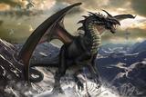 Rogue Dragon by Tom Wood Plastic Sign Signe en plastique rigide par Tom Wood