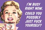 I'm Busy Now Could You Possibly Go Fuck Yourself Funny Plastic Sign Cartel de plástico por  Ephemera
