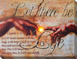 Let There Be Life (Genesis) Stretched Canvas Print