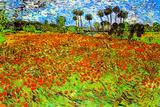 Vincent Van Gogh Poppy Fields Plastic Sign Plastikschild von Vincent van Gogh