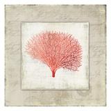 Coral Linen II - Mini Posters par Aimee Wilson