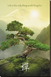 Zen-Mountain Stretched Canvas Print