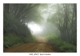 Road to Nowhere Prints by Mike Jones