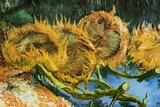 Vincent Van Gogh Four Cut Sunflowers Plastic Sign Plastikschild von Vincent van Gogh
