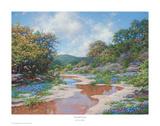 Secluded Stream Art by Larry Dyke