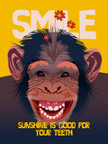 Smile III Lámina giclée por Ken Hurd