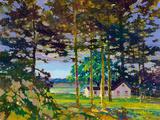 Cottage on Lake Muskoka at Sunset Giclée-Druck von James Hill