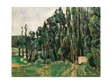 Les peupliers Posters par Paul Cézanne