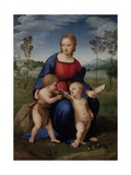 Madonna with Child, & Infant John the Baptist (Madonna of Goldfinch) Affiches par  Raphael