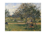 Orchard, the Wheelbarrow Poster par Camille Pissarro