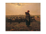 Shepherdess with Her Flock ポスター : ジャン=フランソワ・ミレー