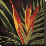 Aves del paraíso II Reproducción de lámina sobre lienzo por Yvette St. Amant