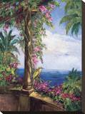 El Mirador Stretched Canvas Print by J. Ripoll