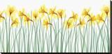Floral Delight I Pingotettu canvasvedos tekijänä Jim Wehtje