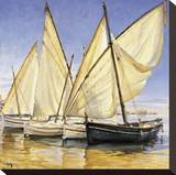 White Sails II Stretched Canvas Print by Jaume Laporta