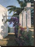 Bougainvillea and Palm Trees Stretched Canvas Print by Poch Romeu