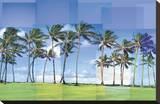 Kauai Bedruckte aufgespannte Leinwand von Pep Ventosa