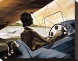 Mediterranean Flight Stretched Canvas Print by Trish Biddle