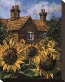Cottage of Delights I Opspændt lærredstryk af Malcolm Surridge