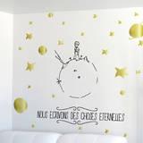 Le Petit Prince - Des choses éternelles Seinätarra