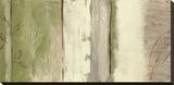 Elementi della natura II Stampa su tela di Yvette St. Amant