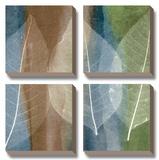Leaf Stricture II Poster af John Rehner