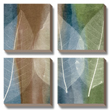Leaf Stricture II Posters by John Rehner