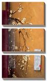 Oriental Blossoms III Prints by Don Li-Leger