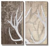 Deer Lodge I Prints by Tandi Venter